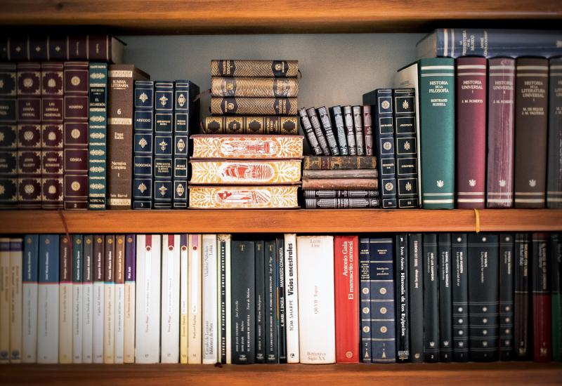 A bookshelf holding a variety of old and modern legal books