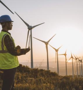 An engineer in high vis and hard hat stands looking across a field of wind turbines